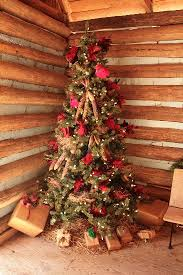 Christmas Tree Cataract Surgery by Busy Christmas Season Rosedale Garden Blog Grit Magazine