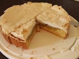 rhabarberkuchen mit pudding thermomix tm5