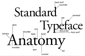 Typography Anatomy of a Letterform