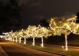 Christmas Tree Lane Pasadena Hastings Ranch by Christmas Lights Pasadena Christmas Lights Decoration