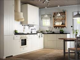 Above Kitchen Cabinet Decorations Pictures by Kitchen Ceiling Mounted Shelves Kitchen Cabinet Decorating Ideas