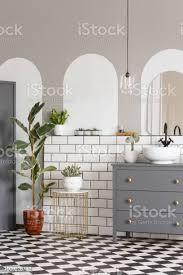 graues gehäuse und ficus im modernen badezimmer interieur mit spiegel und schachbrett boden echtes foto stockfoto und mehr bilder arkade