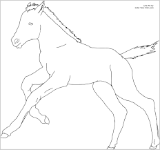Coloring Pages Of Horses And Foals 293603 Cantering Foal Page