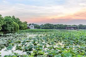 xihu qu 2018 avec photos ten of the lake cnguide cn tour in china