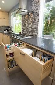 Advance Designing Ideas For Kitchen Interiors Modern Kitchen Design Is Influenced By Contemporary