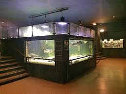 aquarium porte dorée 12 viaparents un monde kid friendly