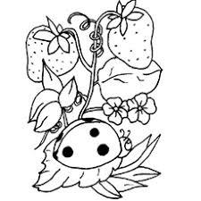 Pretty Ladybug Printable Strawberries And Coloring Page