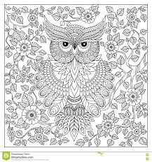 Royalty Free Vector Download Coloring Page With Cute Owl
