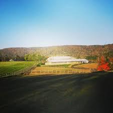 Middleburg Christmas Tree Farm by The Inn At East Lynn Virginia Is For Lovers