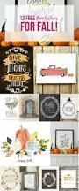 Pumpkin Patch Sioux Falls Sd by Best 25 Fall Months Ideas On Pinterest Oil Futures Today Fall