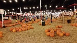 Pumpkin Patches In Bakersfield Ca 100 pumpkin patch bakersfield ca r a m farms pumpkin patch
