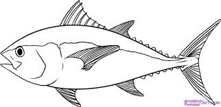 Getcoloringpages Tuna Fish Coloring Page Real Pages Az