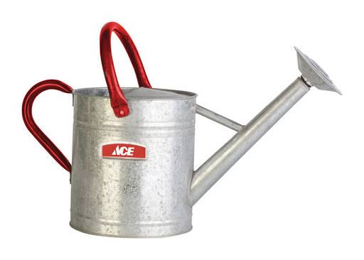 Ace Steel Watering Can - Gray