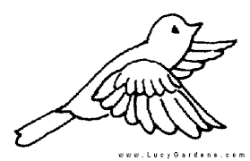 Bird Coloring Page Picture For Gardeners Garden
