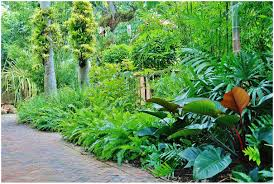 Backyards : Excellent Lovely Tropical Backyard Designs Miami 22 ... Patio Ideas Small Tropical Container Garden Style Pool House Southern Living Backyard Design 1000 About Create A Oasis In Your With Outdoor Plants 1173 Best Etc Images On Pinterest Warm Landscaping 16 Backyard Designs The Cool Amenity For Tropicalbackyard Interior Vacation Landscapes Diy