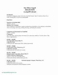 Resume Examples Public Accounting Tomadaretodonateco Objective New