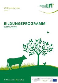 bildungsprogramm by ländliches fortbildungsinstitut issuu