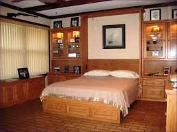Murphy Beds Tampa by Bedroom Marvelous Wall Mounted Fold Down Bed Murphy Bed And
