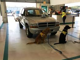 Successful LOYALT Ride Benefits Canine Companions For Independence ... 8 Injured In Crash Stone Wall Collapse At Adesa Fringham Adesa Winnipeg Customer Reviews Car Auction Top 2019 20 11 When Suv Crashes Into Group Auto Auction Rare Auction 56 Stock Car 51 Ford Truck Set First Gear Five Affordable Cars From The January 2018 Barrettjackson Used News 516 By Issuu Hoffman Estates Facility Celebrates Opening Specials Flyers Richmond Bc Truckerzine November 2011 Auctions Give Back For The Holidays Ordrive