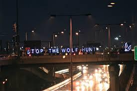 Media Northwoods Wolf Alliance