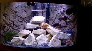 large aquarium rocks for sale sandstone rock lake malawi cichlids in juwel trigon 190