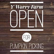 Maryland Pumpkin Patch by Y Worry Farm Pumpkin Patch U0026 Christmas Tree Shoppe Home Facebook