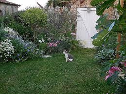 cuisine bois nature et d馗ouverte cuisine cuisine bois nature et découverte luxury cagouille s garden