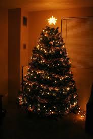 Christmas Tree Shop Syracuse Ny by Eyeloveyou December 2013