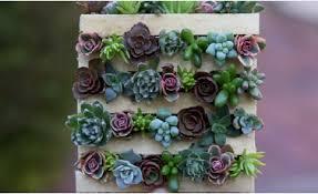 DIY Tiny Succulent Pallet Garden