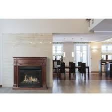 Gas Light Mantles Home Depot by Gas Fireplaces Fireplaces The Home Depot
