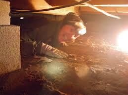 Floor Joist Jack Crawl Space by How To Fix Sagging Floors Jeff Greene