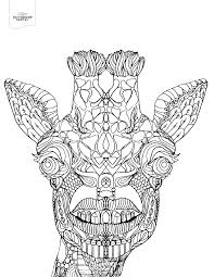 Toothy Giraffe Adult Coloring Book Page Fun Fact Did You Know That Giraffes Only