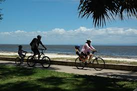 Family Cycling On The Bribie Island Foreshore