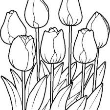 Spring Flower In The Garden Coloring Page