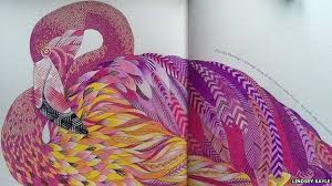 Lindsey Sayles Finished Colouring Of A Flamingo
