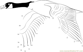 Image Result For Flying Geese Coloring Page