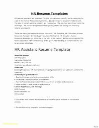 How To Make Skills 2 Columns Resume Best Of Column Template Reference Two Word