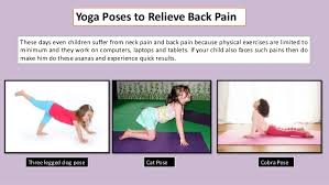 Yoga Poses To Relieve Back Pain Cat