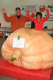 Atlantic Giant Pumpkin Growing Tips by New Atlantic Record Pumpkin Tips The Scales At Windsor Weigh Off