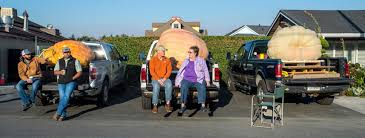 Half Moon Bay Pumpkin Festival Biggest Pumpkin by Heaviest Is Best Pumpkin Sets Record At California Contest Wjla