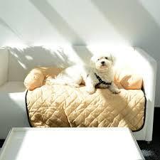canap pour chien sofa pour canapé divano tapis et matelas pour chien wanimo