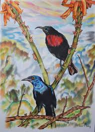 Scarlet Chested Sun Bird And Glossy Starling