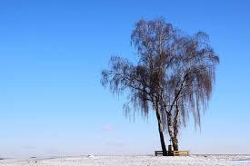 image libre ciel bleu lumière du jour le plein air paysage