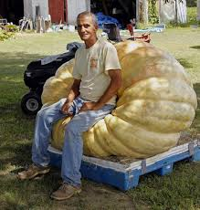 Pumpkin Patch Raleigh Nc 2014 by The Great Pumpkin Nc Man U0027s 1 296 Pound Fruit Sets A State Record