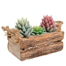 Country Rustic Natural Wood Plant Box Pot Windowsill Flower Container Small Decor Holder