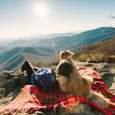 51 Breathtaking Travel Destinations Your Dog Will Adore Visiting