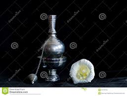 100 Flannel Flower Glass Still Life Photography Dead Concept By Small Container And Paper