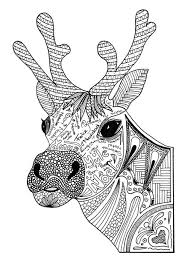 Christmas Reindeer Adult Coloring Page