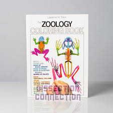 Veterinary Anatomy Colouring B Cool Coloring Book