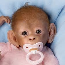 Buy Ashtondrake So Truly Real Lifelike Baby Monkey Doll By Linda